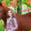Comment Panser un Cheval et le Parfait Kit de Pansage