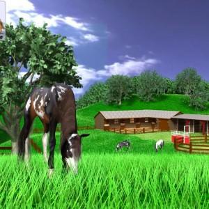 A Virtual Horse - Horse Game