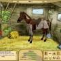 My horse farm - horse game